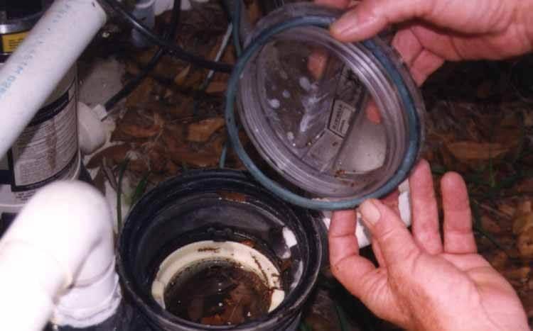 Replacing Pool Pump Gasket